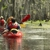 Kayak Swamp Tours