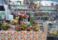 Botanica Francis & Floral Shop - Pembroke Pines, FL