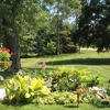 Yard Solutions Lawn Care