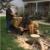 Gardner Stump Removal