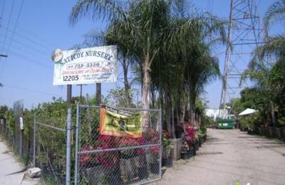 Saticoy Nursery 12205 St North Hollywood Ca 91605