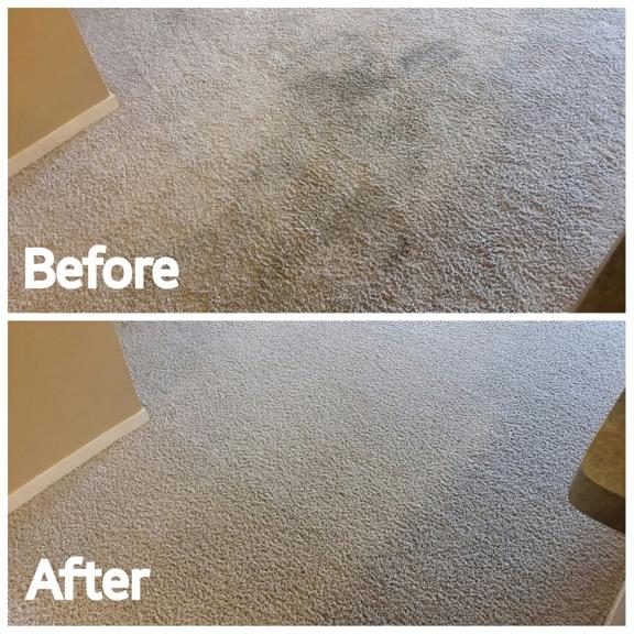 Bluegrass Cleaning Company - Lexington, KY