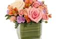 Flower Barn Of Hillsborough - Hillsborough, NJ
