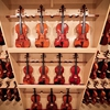 Terra Nova Violins