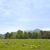 Wasatch Lawn Memorial Park