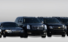 Detroit Airport Town Cars Chesaning