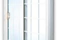 Window Man - Grand Ledge, MI