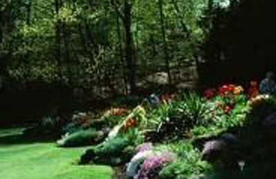Squirrely Jack Tree And Lawn Care - Poquoson, VA