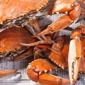 St Michaels Crab & Steak House - Saint Michaels, MD