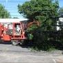 Royer Tree Service Inc - Dedham, MA