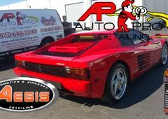 Auto Pro Detailing - Fremont, CA