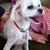 Bucks County Pet Care