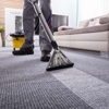 Best Way Rug & Furniture Cleaners