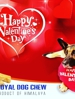 A Dog Is The Only Things On Earth That L❤ve You More Then He Love Himself . HAPPY VALENTINE DAY ������������
