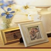 Buchanan and Kiguel Fine Custom Picture Framing