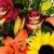 Renee's Flower Shop
