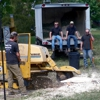 Stumps Of Time Removal Service