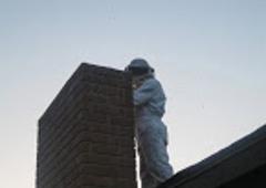 Wow Pest Control Inc. - Bakersfield, CA