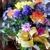 Cindy's Florist