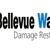 Bellevue Water Fire Damage Pros