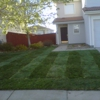 Lawn Pro Solutions