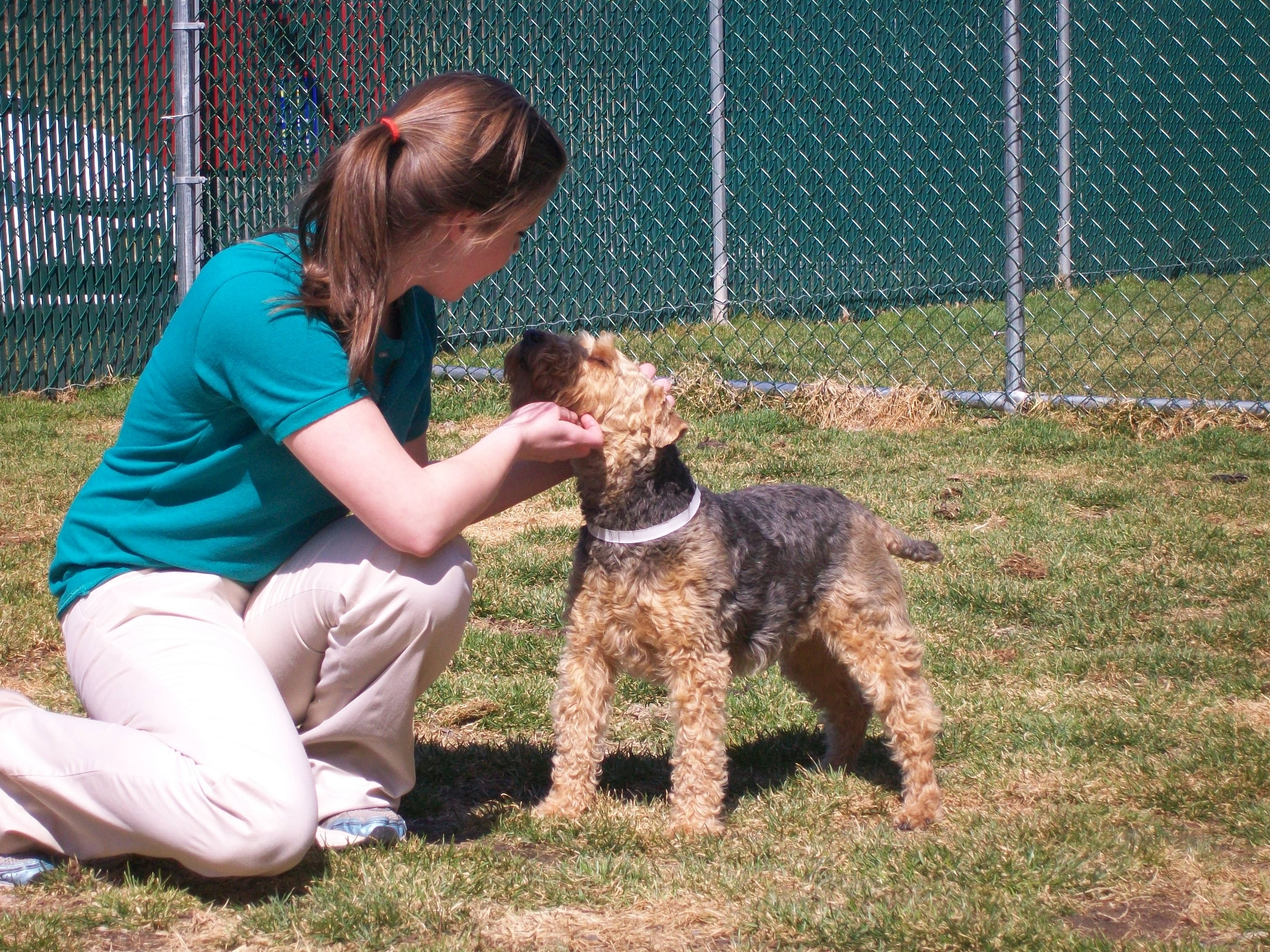 Best Friends Pet Care 269 Red Schoolhouse Rd Spring Valley Ny 10977 Yp