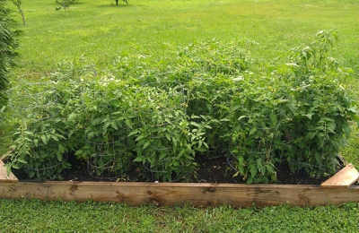 K C Mulch Supply & Delivery - Gibsonville, NC
