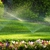 Hydroscapes Irrigation