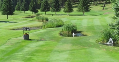 Jerry's Bar & Restaurant at Meadow Creek Golf Course - Fortine, MT