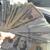 MoneyCounts Corp.
