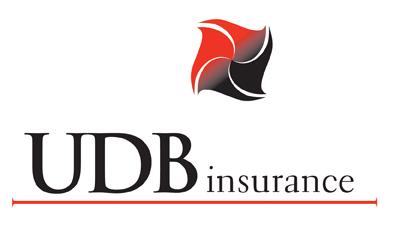 Image result for UDB Insurance logo