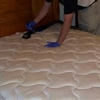 100% Non-Toxic Green Carpet Cleaning Call Now