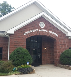 Brassfield Animal Hospital - Greensboro, NC