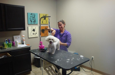 MY Vet Animal Hospital - Westerville, OH