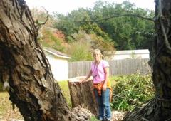 B & L Tree & Landscaping - Milton, FL
