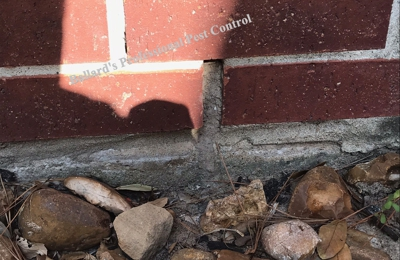 Ballard's Professional Pest Control - Kingwood, TX