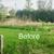 A1 Bush Hogging & Lawn Service