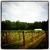 Railway Winery & Vineyards