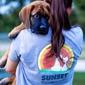 Sunset Veterinary Clinic - Edmond, OK