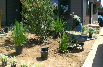 Charly Landscaping - Santa Fe, NM