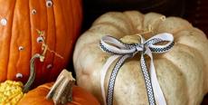 containerstore-pumpkin-crop