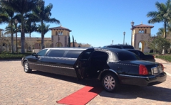 Tarpon Executive Car Service & Limousine