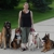 In Your Home Dog Training