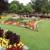 We Care Lawn Care Solutions