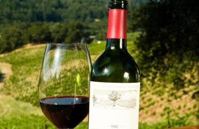 50 Sips Wine - Fenton, MI