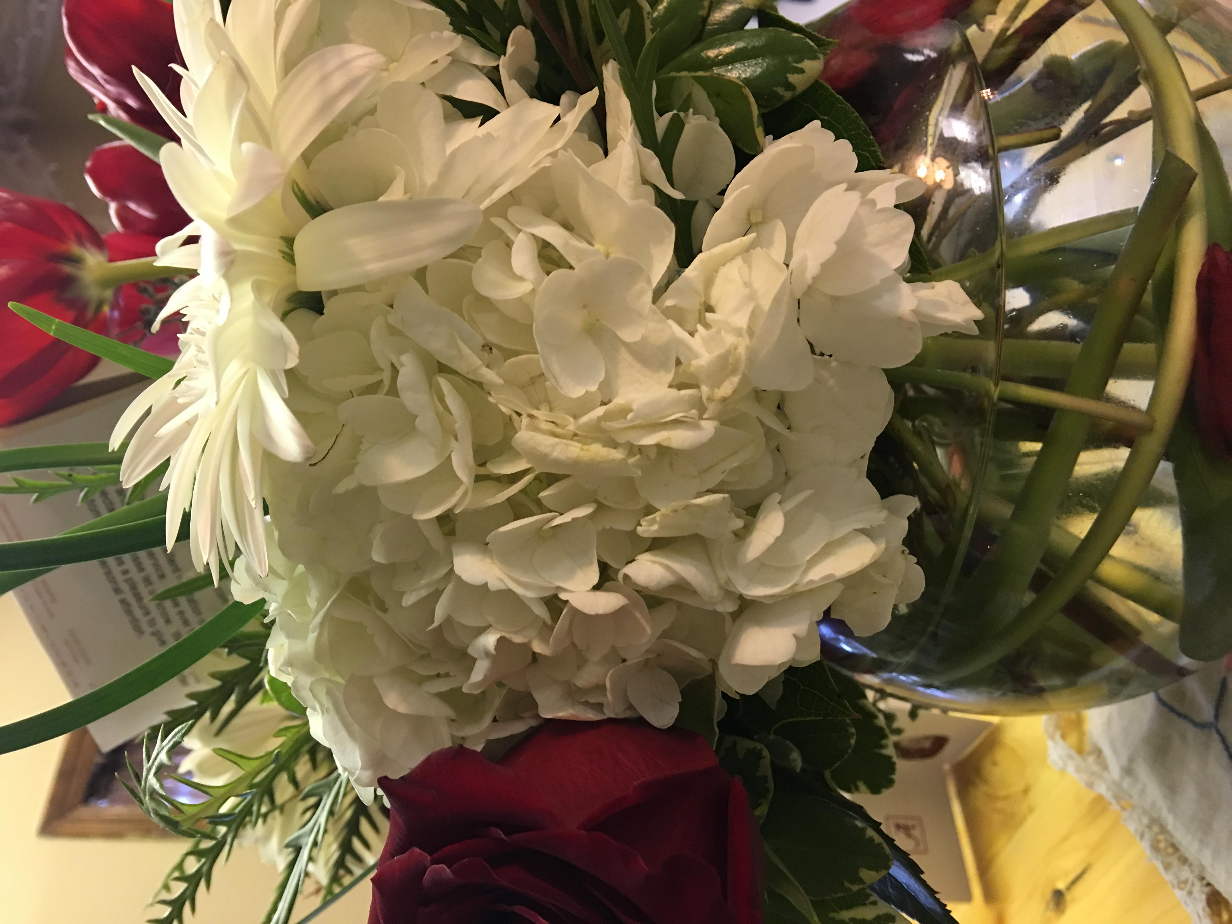 Holiday Flowers 2316 S Germantown Rd Germantown Tn 38138 Yp