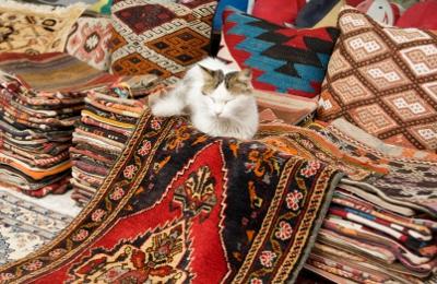 1800 NY Carpet - Yonkers, NY