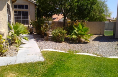 Doggy Daycare and Doggy Overnight Stay - North Las Vegas, NV
