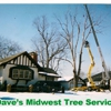 Dave's Midwest Tree Service