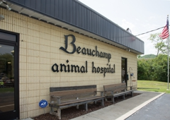 Beauchamp Animal Hospital - Franklin, TN